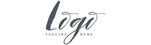 script and serif logo example